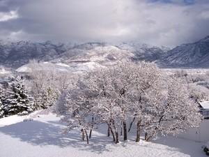Alpine, UT